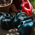 image of several watering buckets