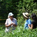 Members talking gardening