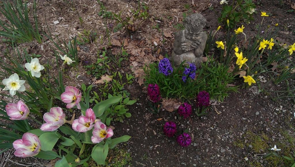 Get Ready! The Spring Garden